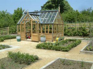 Зеленчуци в оранжерии и парници
