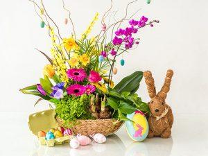 цветя подходящи за Великден