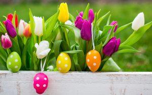 Подходящи цветя за Великден