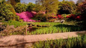 Кралска ботаническа градина Kew Gardens, пътека