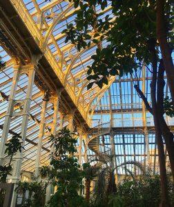 Кралска ботаническа градина Kew Gardens, вътре