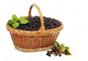 кошница с къпини в градина