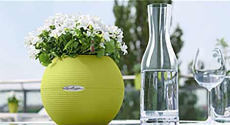 Lechuza - система за отглеждане на растения в дома