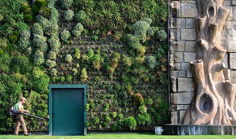 Вертикални градини Градина БГ